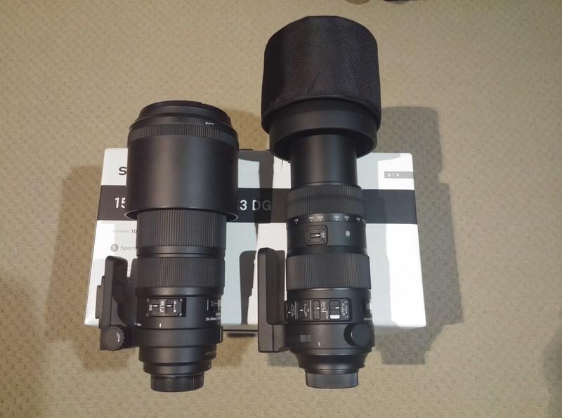 Sigma 150-600 Sport (Nikon Mount)