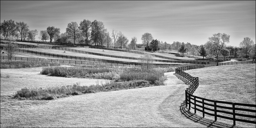 Meandering Fences