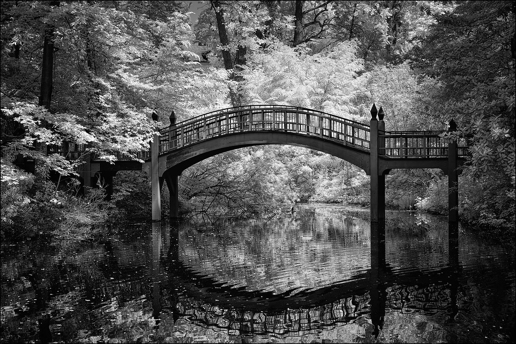 Tranquility Bridge