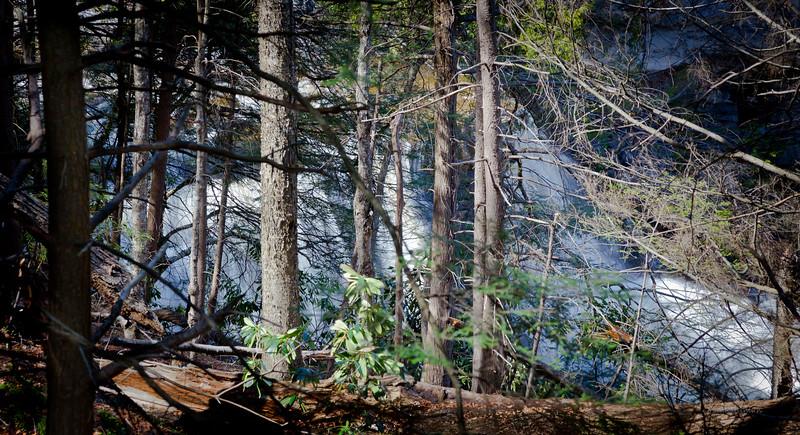 Blackwater Falls -  Between the Lines