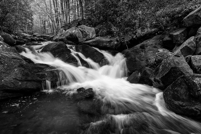 River Runs
