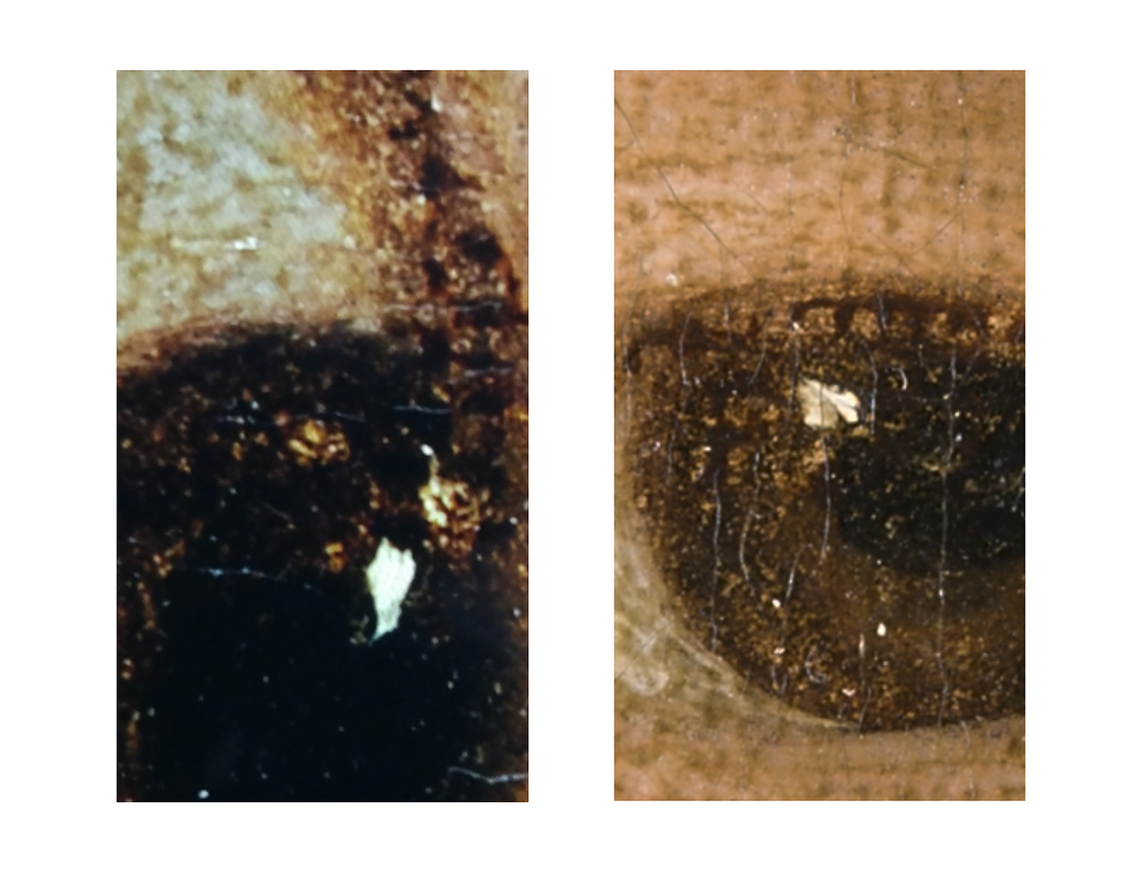 "(Fig.9)  The image to the left is a closeup of Marie Anne Blanchet's right eye. The hand with three of the fingers deliniated and the seated figure above to the right would be consistent with Goya's fertile imagination. The letter ""F"" can be seen if the image is turned 180 degrees. The white of the left eye (image on right) is comprised of an odd graphic with a face looking to the left. An owl in flight can be seen in the corner of the eye."