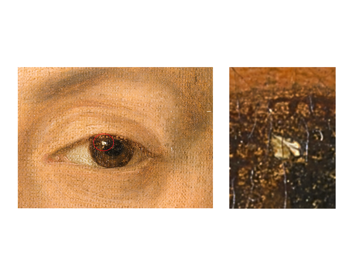 (Fig. 10)  Photograph of left eye showing amazing detail. The white of the eye is the face of a person in profile. Goya's name is written across the face. There appears to be two breasts beneath the face. One can only guess what is painted on top of the head.