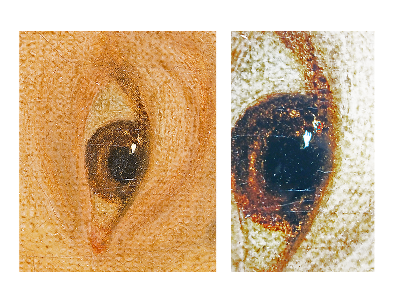 "(Fig. 8)  This is a photograph of the right eye featuring a hand,  Goya's name, the letter ""F"" and numerous caricatures throughout the eye. Different scenes will become evident as the image above is rotated."