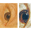 "(Fig. 12)  This is a photograph of the right eye featuring a hand,  Goya's name, the letter ""F"" and numerous caricatures throughout the eye. Different scenes will become evident as the image above is rotated."