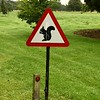 Red Squirrel Sign in Northumbria, England