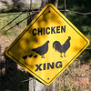Chicken Crossing sign at Emerald Farms, Greenwood, SC.