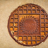 SRW1409_0154_Sunflower_Manhole_Cover