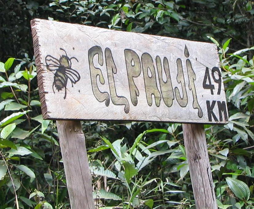49 Km to Angel Falls, Venezuela
