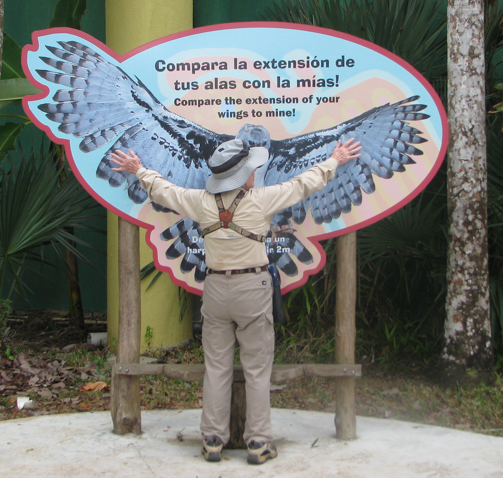 Panama Harpy Eagle and Pat