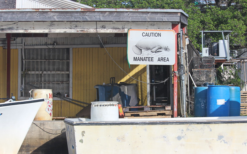 Manatee Area Caution Sign