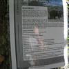 Bear Warning.  Graveyard Fields 2010