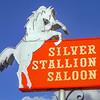 Silver Stallion Saloon Horse