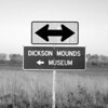 Near Dickson Mounds in Fulton County, IL