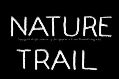 015-sign_nature_trail-wdsm-08sep14-12x08-bw-9530