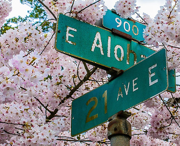 21st and Aloha, Seattle, Washington, 2000