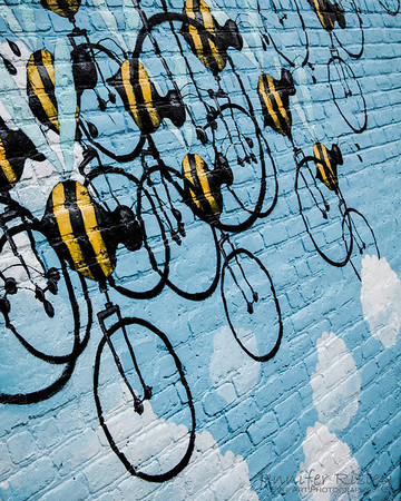 Matt Lively's Beecycles