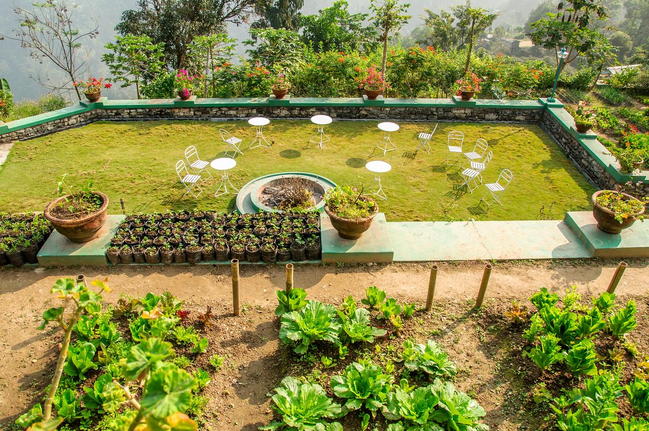 Glenburn Tea Estates, Darjeeling, Sikkim, India