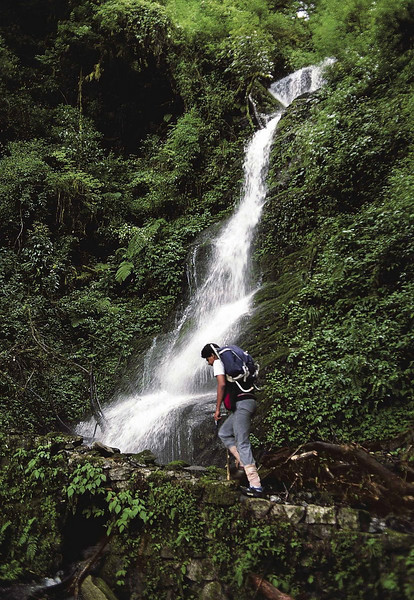 Monsoon trekking between Yuksam and Bakhim