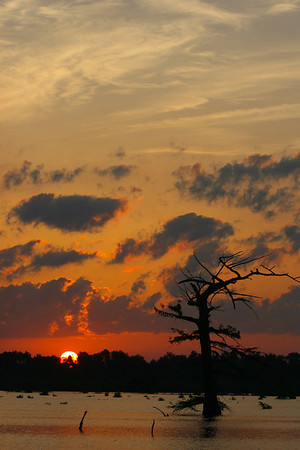 Vicksburg Mississippi Oh what beautiful photos we get when we mix that Southern water with a southern sunrise or sunset! A beautiful delta sunrise or sunset!