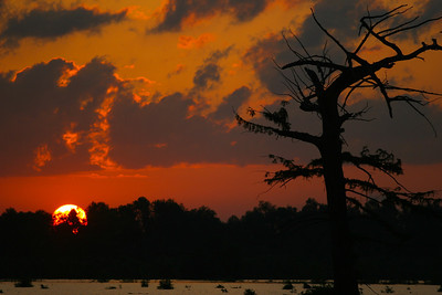 Vicksburg Mississippi, calendar Oh what beautiful photos we get when we mix that Southern water with a southern sunrise or sunset! A beautiful delta sunrise or sunset!