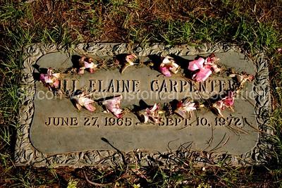 Jill Elaine Carpenter grave at the Alta Mesa Memorial Park in Palo Alto, California