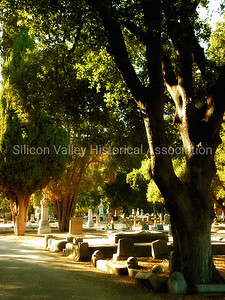 Holy Cross Catholic Cemetery in Menlo Park, California