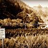 Santa's Tree Farm & Village in Half Moon Bay, California