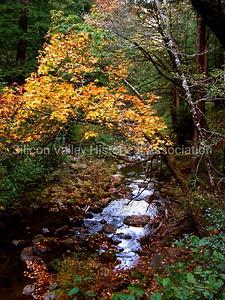 Sky Londa creek in Woodside, California
