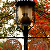 Lamppost with decorative metal flair in the Redwood City Historic District