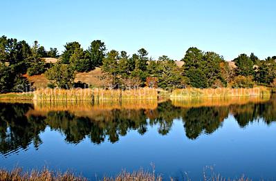 Boronda Lake at the Palo Alto Foothills Park