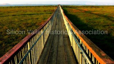 Footbridge at the Palo Alto Baylands Preserve