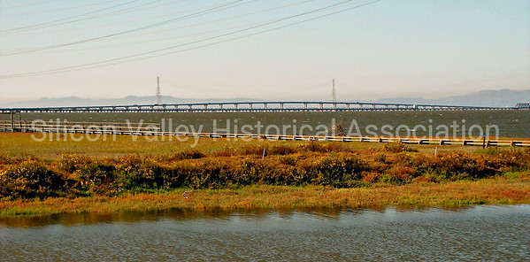 Dumbarton Bridge as seen from the Palo Alto Baylands Preserve