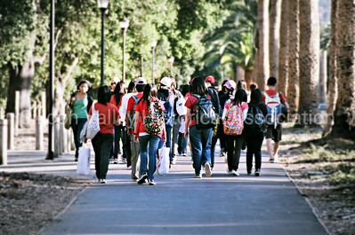 Group of students walking down Palm Drive at Stanford University