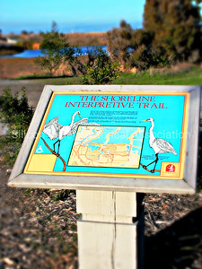 The Shoreline Interpretive Trail Sign in Mountain View, California