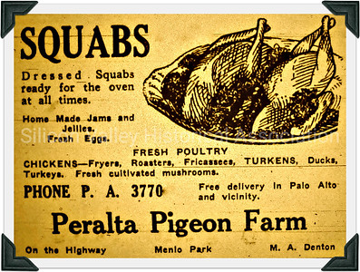 1929 Peralta Pigeon Farm Advertisement
