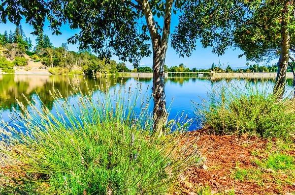 Vasona Lake Park in Los Gatos