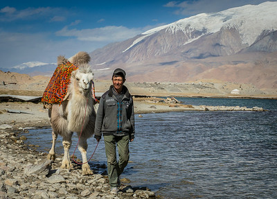 Lake Karakul, China: with a Bactrian camel and its driver in the foreground, the slopes of 24,747 foot Mustagh Ata in the background