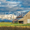 Barn in Mount Vernon, WA