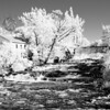 Canon 5D Mark II converted to infrared