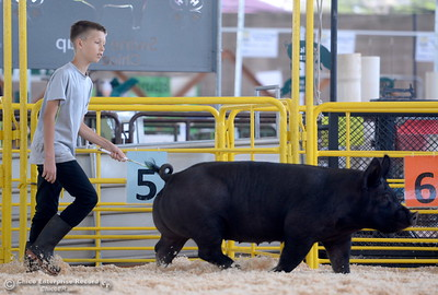 "11-year-old Drew Ford of Oroville gets a little practice walking his hog ""Scarlet O'Hammy"" around the ring as things get underway at the Silver Dollar Fairgrounds in Chico, Calif. Tues. May 22, 2018.  (Bill Husa -- Photos)"