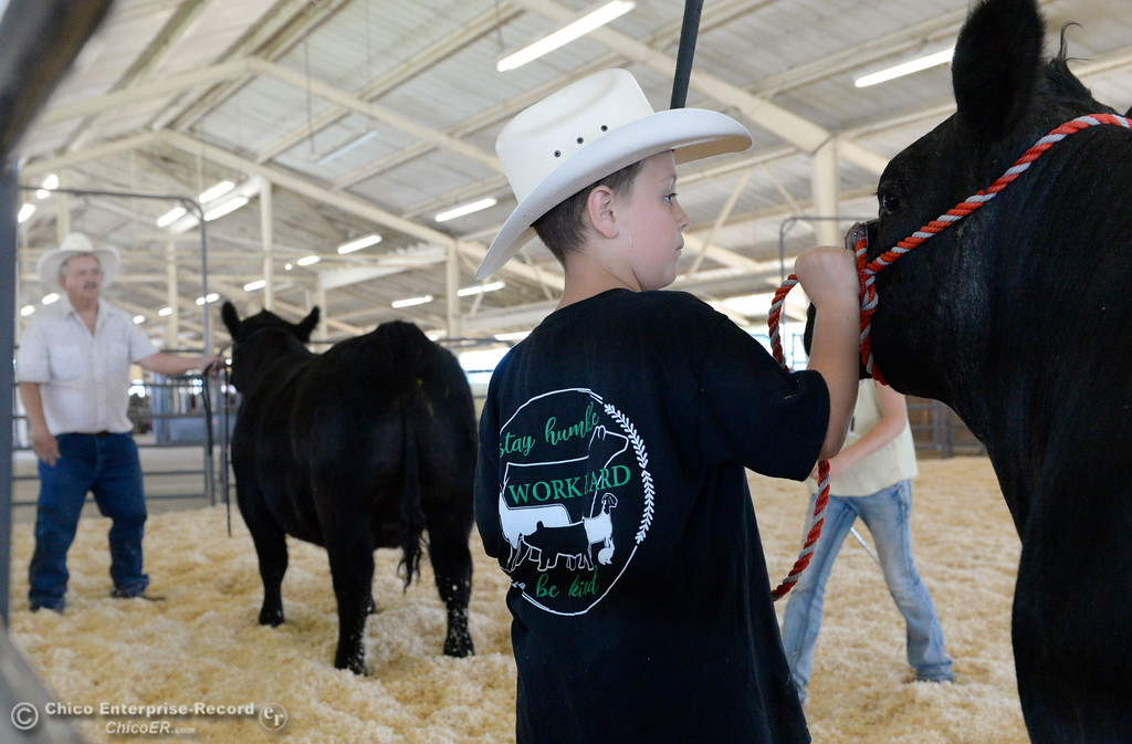 . 10-year-old Orion Helberg of Chico holds onto a steer while his grandpa Dennis Helberg of Corning helps 11-year-old Haylie Jewett of Chico with some pointers as things get underway at the Silver Dollar Fairgrounds in Chico, Calif. Tues. May 22, 2018.  (Bill Husa -- Photos)
