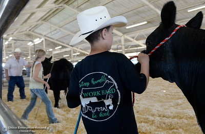 10-year-old Orion Helberg of Chico holds onto a steer while his grandpa Dennis Helberg of Corning helps 11-year-old Haylie Jewett of Chico with some pointers as things get underway at the Silver Dollar Fairgrounds in Chico, Calif. Tues. May 22, 2018.  (Bill Husa -- Photos)