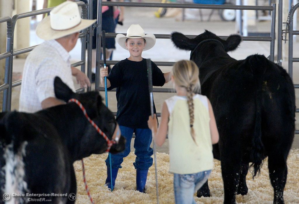 . Granpa Dennis Helberg of Corning shares a few showing pointers with his grandson 10-year-old Orion Helberg and 11-year-old Haylie Jewett as the youngsters get their steers ready for show at the Silver Dollar Fairgrounds in Chico, Calif. Tues. May 22, 2018.  (Bill Husa -- Photos)