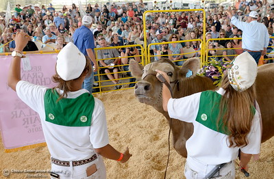 Grand Champions and Reserve Grand Champions are auctioned off at the Silver Dollar Fair in Chico, Calif. Saturday May 28, 2016.  (Bill Husa -- Enterprise-Record)
