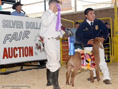 Tony Rosales holds his goat as Grand Champions and Reserve Grand Champions are auctioned off at the Silver Dollar Fair in Chico, Calif. Saturday May 28, 2016.  (Bill Husa -- Enterprise-Record)