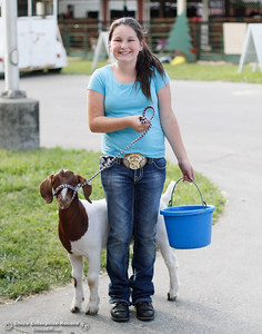 """Pehton Hobbard walks her goat Penny, who's """"one to keep an eye on,"""" back to her pen as preparation for opening day of the Silver Dollar Fair ensues Tuesday May 24, 2016 in Chico, Calif. (Emily Bertolino -- Enterprise-Record)"""
