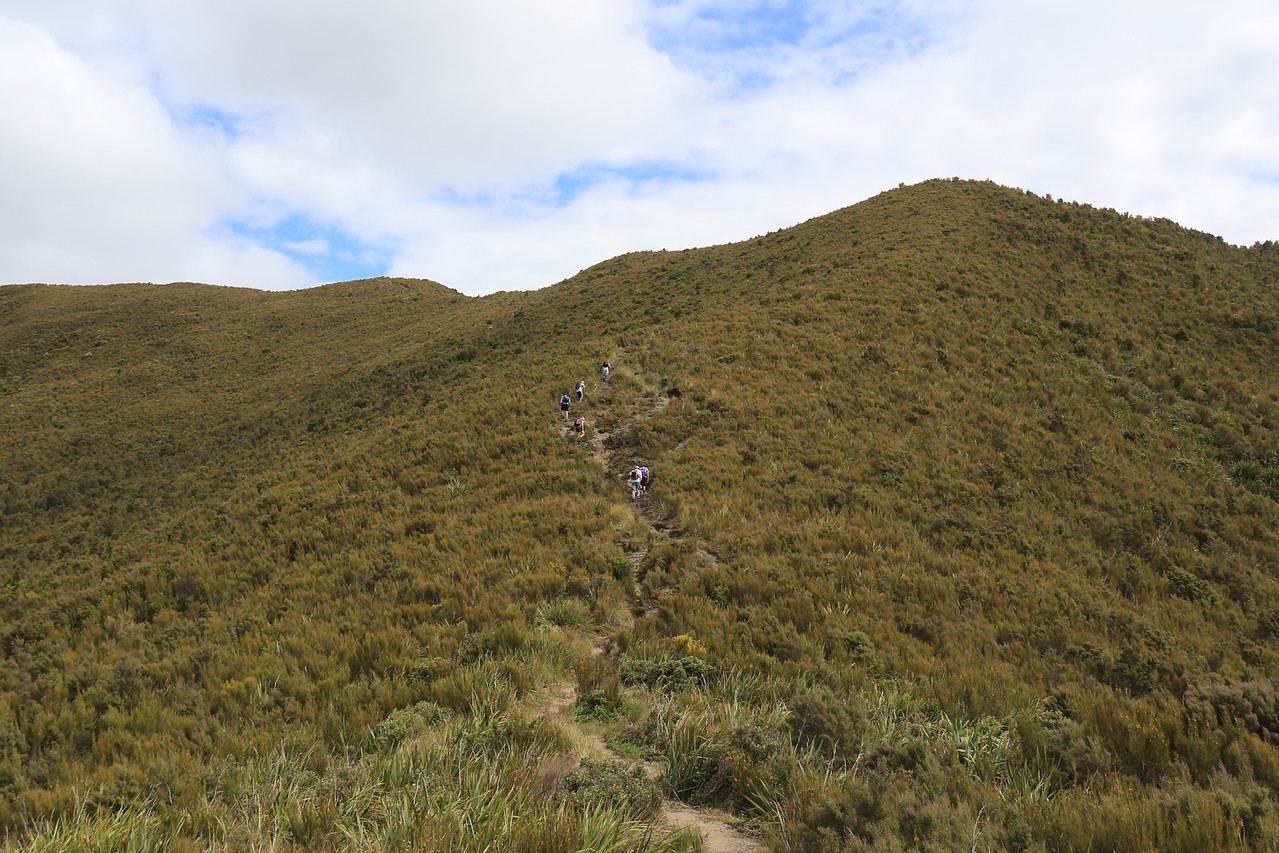 The climb to Rosella Ridge junction and Pulpit Rock
