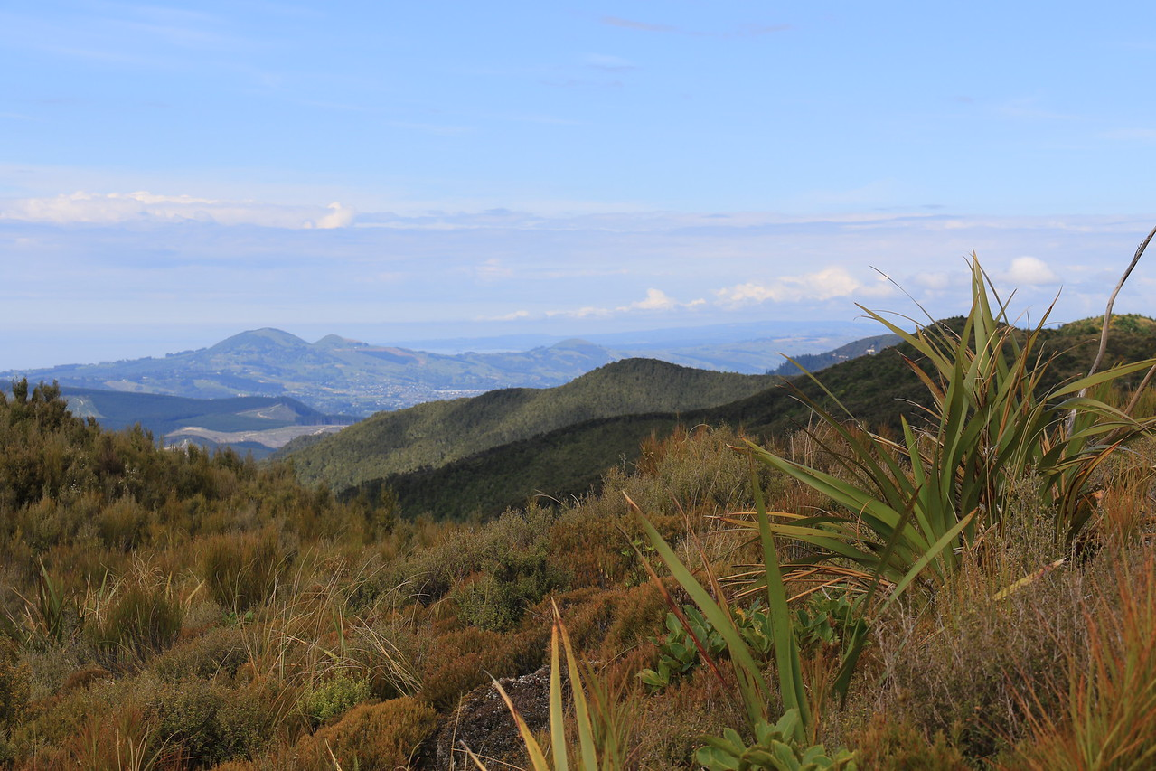 Mosgiel, Saddle Hill and Scroggs Hill