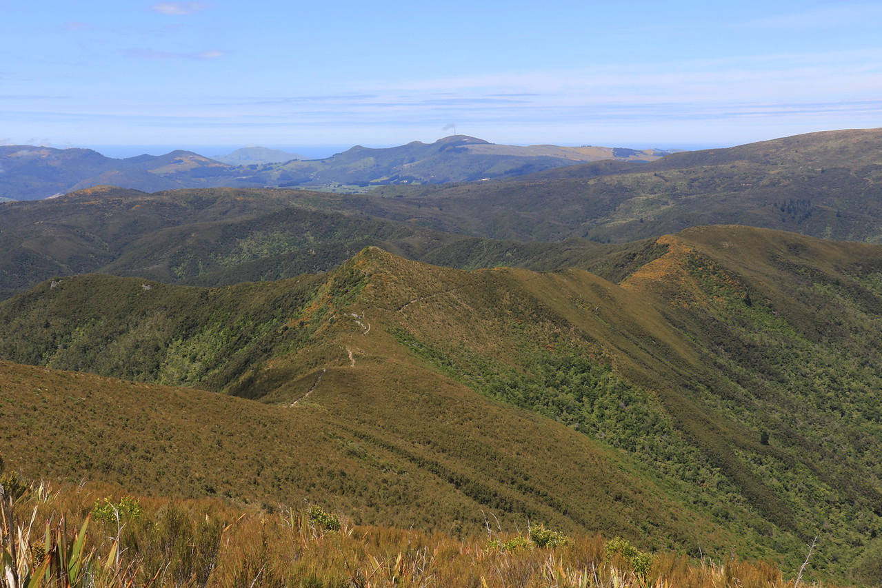 Green Ridge, Green Hill and Mt Cargill